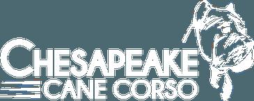 Chesapeake Cane Corso Logo